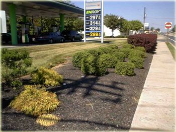 Royal Farms Landscaping